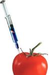 Генномодифицированные продукты - бомба замедленного действия?