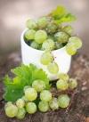 Виноград во время беременности – какие существуют мифы