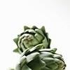 Артишок – растение, окруженное мифами
