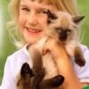 Аллергия на животных - если не хочется расставаться с домашним питомцем