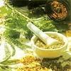 Травы от бесплодия - эффект не гарантирован