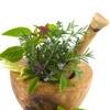 Лечение травами мужского бесплодия – бабушкины рецепты