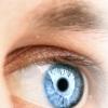Глаукома - признаки начала заболевания, развитой и далеко зашедшей глаукомы