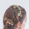 Шалфей для волос – варианты применения