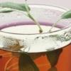 Шалфей для прекращения лактации – чаи и настои