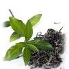 Зеленый чай: вчера, сегодня и навсегда