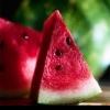 Арбузная диета - настоящее удовольствие для гурмана