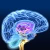 Атеросклероз сосудов головного мозга – проблема пожилого возраста