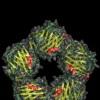 С-реактивный белок: что это такое?